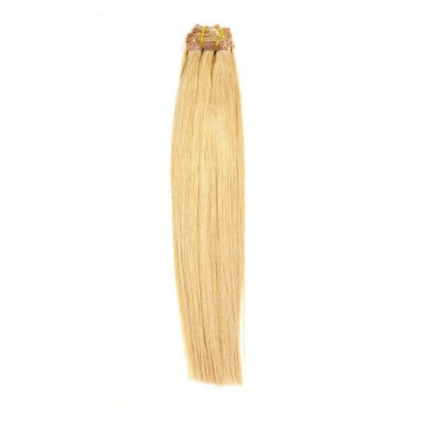 Dirty Blonde Clip Ins